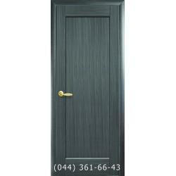 Двери Берна grey глухое