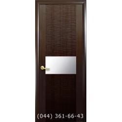 Двери Аста каштан глухое (с зеркалом)