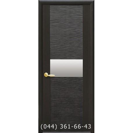 Двери Аста grey глухое (с зеркалом)